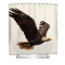 Lunch To Go Shower Curtain