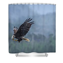 Lunch To Go Shower Curtain by Timothy Latta