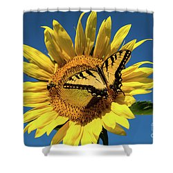 Lunch With Friends Shower Curtain