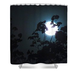 Luner Leaves Shower Curtain