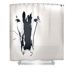Lungta Windhorse No.1 Concept Shower Curtain