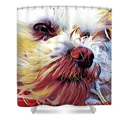 Lupi Shower Curtain