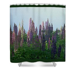 Lupine In Morning Light Shower Curtain by Christopher Mace