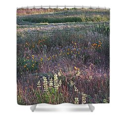 Lupine Shower Curtain by Laurie Stewart
