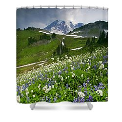 Lupine Storm Shower Curtain by Mike  Dawson