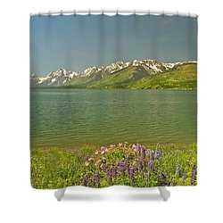 Lupines In The Tetons Shower Curtain
