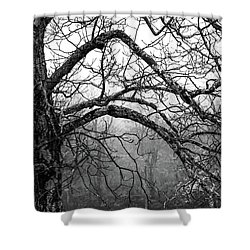 Shower Curtain featuring the photograph Lure Of Mystery by Karen Wiles