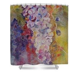 Luscious Grapes Shower Curtain