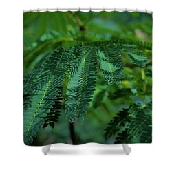 Lush Foliage Shower Curtain