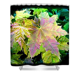 Shower Curtain featuring the mixed media Lush Spring Foliage by Will Borden