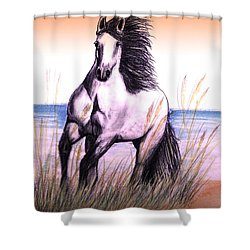 Lusitano Thunder By The Sea Shower Curtain