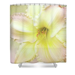 Shower Curtain featuring the photograph Luxurious Lily by Kathi Mirto