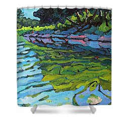 Lyndhurst Shoreline Shower Curtain