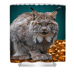 Lynx Shower Curtain