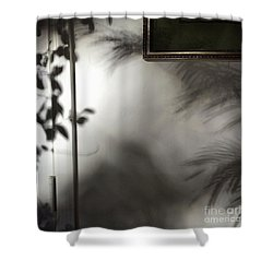 Lysiloma Shadows Shower Curtain