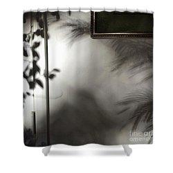 Lysiloma Shadows Shower Curtain by Kim Nelson