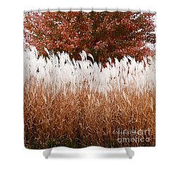 M Landscapes Fall Collection No. Lf46 Shower Curtain