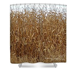 M Landscapes Fall Collection No. Lf57 Shower Curtain