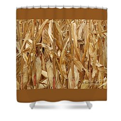 M Landscapes Fall Collection No. Lf59 Shower Curtain