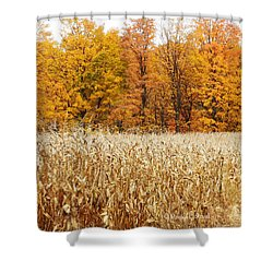 M Landscapes Fall Collection No. Lf62 Shower Curtain