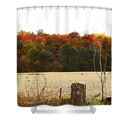 M Landscapes Fall Collection No. Lf66 Shower Curtain