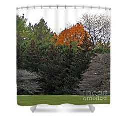 M Landscapes Fall Collection No. Lf67 Shower Curtain