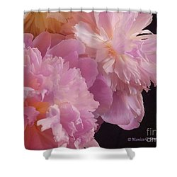 M Shades Of Pink Flowers Collection No. P66 Shower Curtain