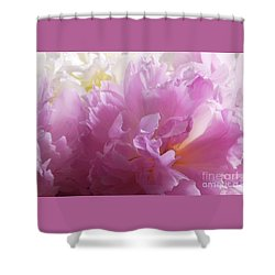 M Shades Of Pink Flowers Collection No. P72 Shower Curtain