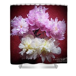M Shades Of Pink Flowers Collection No. P73 Shower Curtain