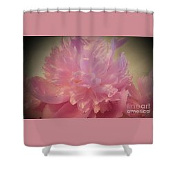 M Shades Of Pink Flowers Collection No. P78 Shower Curtain