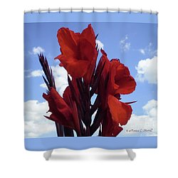 M Shades Of Red Flowers Collection No. R16 Shower Curtain
