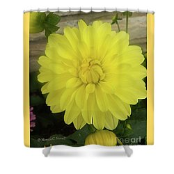 M Shades Of Yellow Flowers Collection No. Y90 Shower Curtain
