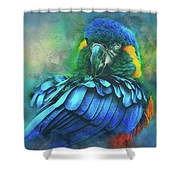 Macaw Magic Shower Curtain by Brian Tarr