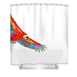 Macaw Vulture Shower Curtain by Richard Patmore