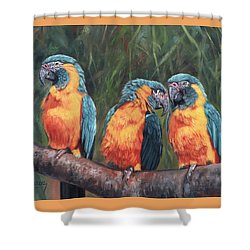 Shower Curtain featuring the painting Macaws by David Stribbling