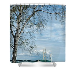 Mackinac Bridge Birch Shower Curtain