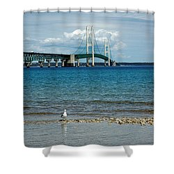 Shower Curtain featuring the photograph Mackinac Bridge Private Seagull Beach by LeeAnn McLaneGoetz McLaneGoetzStudioLLCcom