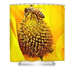 Macro Bee Shower Curtain