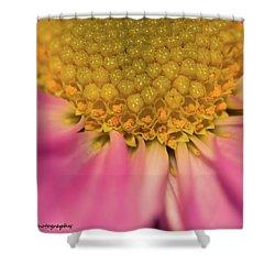 Macro Daisy Shower Curtain by Nance Larson