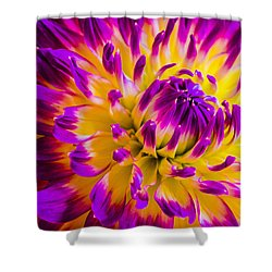 Macro Flora Shower Curtain by Bruce Pritchett