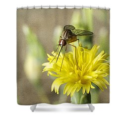 Macro Photography Of A Mosquito Over A Lettuce Flower Shower Curtain by Claudia Ellis