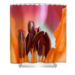 Macro Stamen Shower Curtain