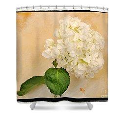Macro White Hydrangea Shower Curtain