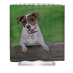 Maddie Shower Curtain by Carole Robins