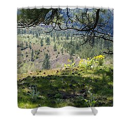 Shower Curtain featuring the photograph Made In The Shade by Ben Upham III