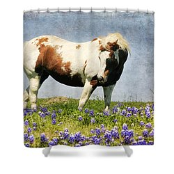 Made With Love From Texas Shower Curtain
