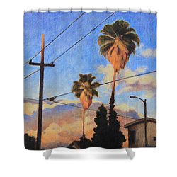Madison Ave Sunset Shower Curtain by Andrew Danielsen