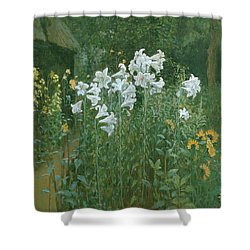Madonna Lilies In A Garden Shower Curtain by Walter Crane