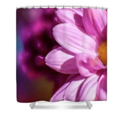 Magenta Floral On Blue Shower Curtain