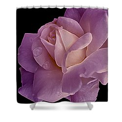 Magenta Queen 8  Shower Curtain